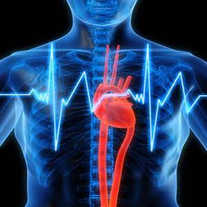 heart-stress
